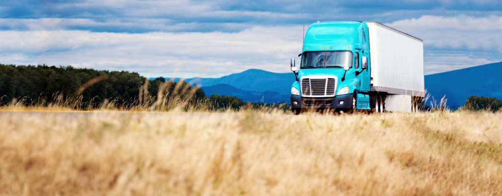 Blue semi-truck driving down the highway with dried grass on the side of road.