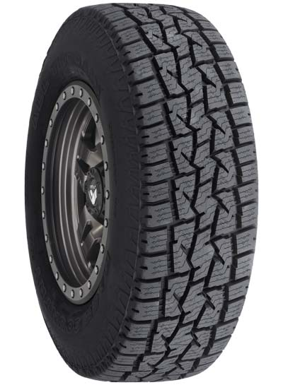 Back Country All Terrain Tire