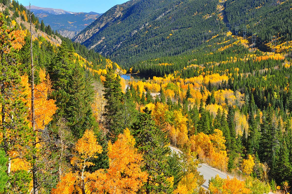 Photo: Guanella Pass by Paul Sattler