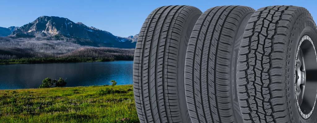 Many Glaciers National Park in summertime with three tires.