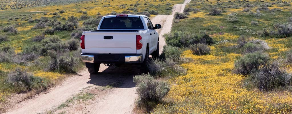 White pickup driving down a dirt road.
