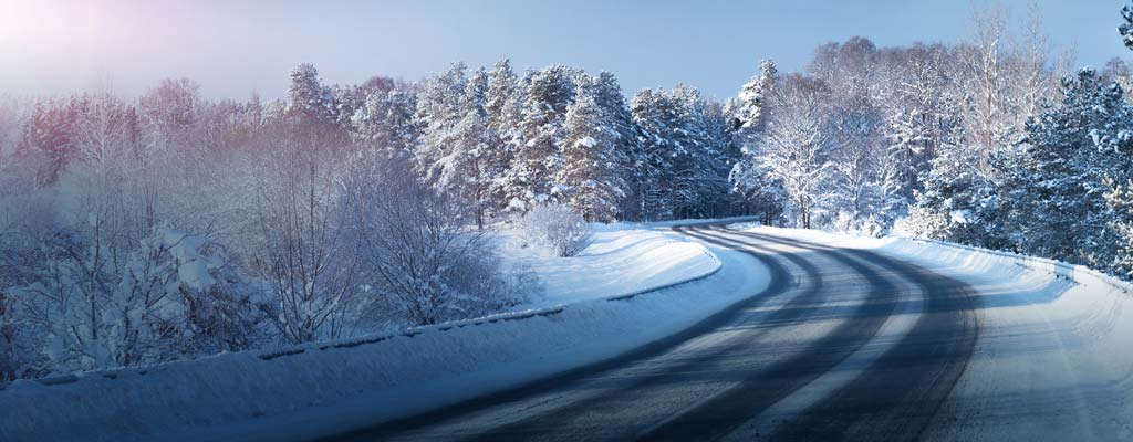 A slushy road carves through through snow-covered trees.