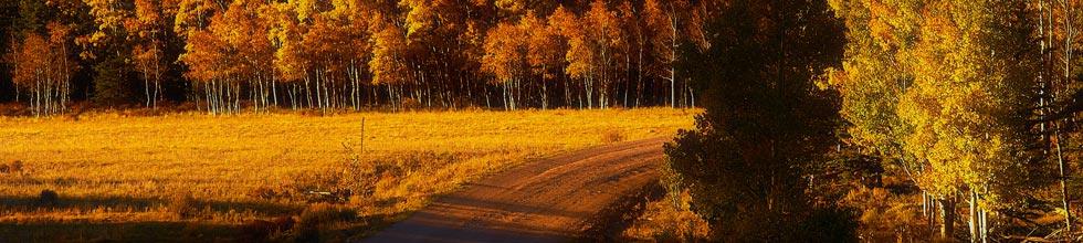 A photo of Buffalo Peaks taken by Ryan Fonkert.