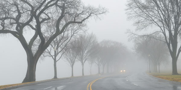 Car on foggy country road