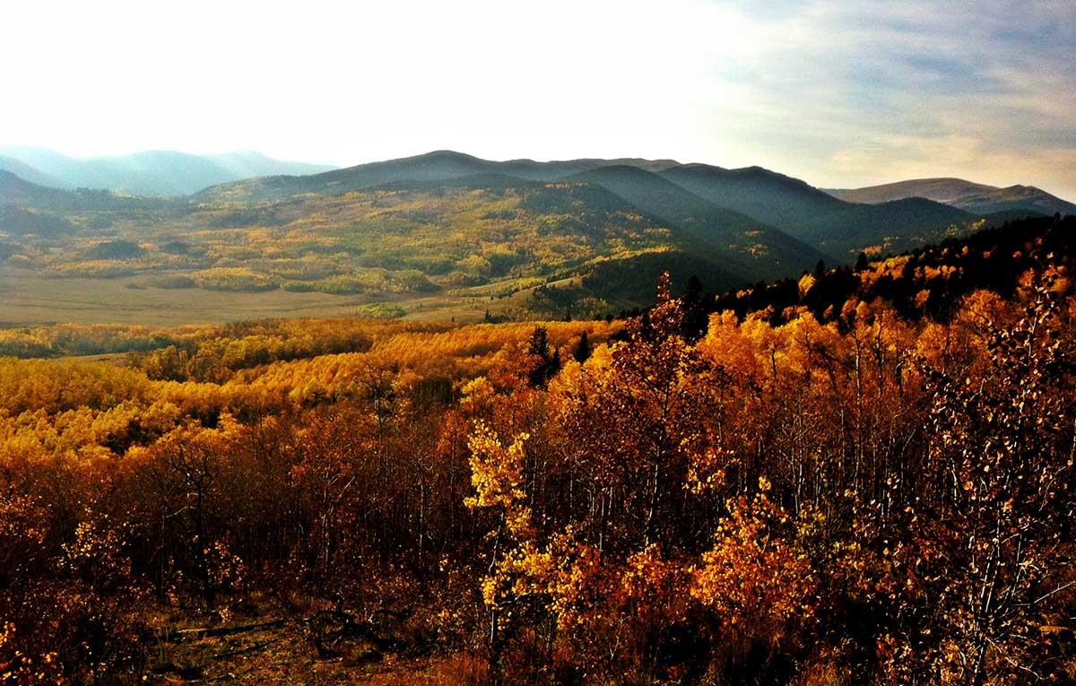 Photo: Kenosha Pass Trail by Christy Correll/Flickr